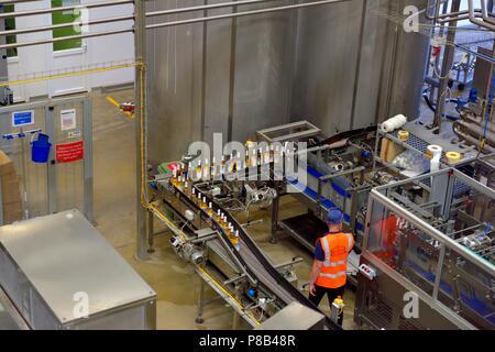 Bottling production line, Healeys Cornish Cyder Farm,Penhallow, Truro,Cornwall,England,UK - Stock Photo