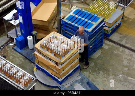 Man stacking cases on a pallet turntable, Healeys Cornish Cyder Farm,Penhallow, Truro,Cornwall,England,UK - Stock Photo