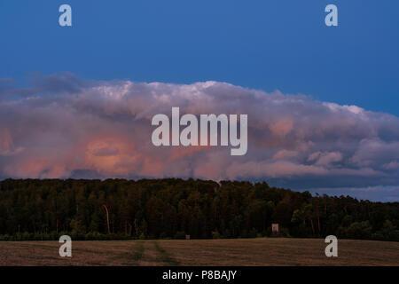 Harzlandschaft im Abendlicht - Stock Photo