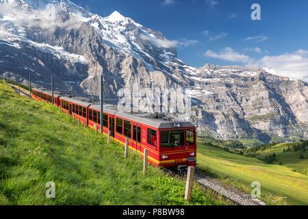 Train from the Jungfrau railway near Kleine Scheidegg, Bernese Oberland, Switzerland - Stock Photo