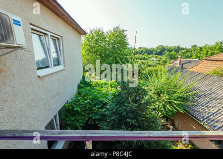View from the balcony to the courtyard at the tall green trees and the nearest buildings of the building . For your design - Stock Photo