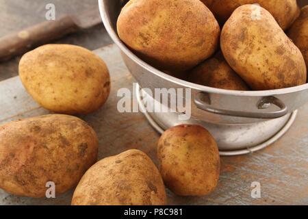 preparing king edward potatoes - Stock Photo