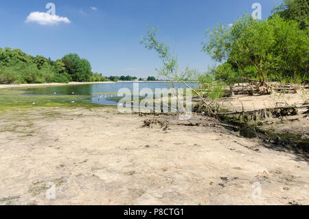 Edgbaston,Birmingham, UK. 11th July 2018. The continued dry weather in Birmingham has caused very low water levels at Edgbaston Reservoir which feeds the canal network. Credit: Nick Maslen/Alamy Live News - Stock Photo