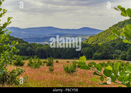 A chic meadow landscape with burnt dry grass with roofs of the city's buildings, seen from behind the tree tops, against the backdrop of mountain slop - Stock Photo