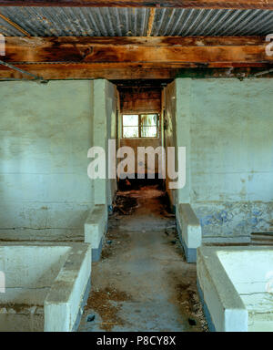 Bath House Ruins, Zzyzx Mineral Springs, Mojave National Preserve CA - Stock Photo