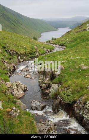 Tweedsmuir Hills, upper Tweed valley, Talla - Talla Burn. - Stock Photo