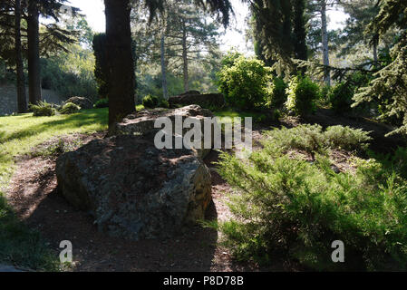 A picturesque glade in a park with large stones lying in the shade near a tall tree with the penetrating rays of the sun through its branches. . For y - Stock Photo