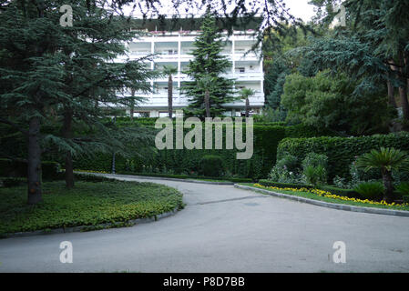 Asphalt road among the green grass of the tall clipped bushes of growing palm trees on the background of a sanatorium building with white walls and ba - Stock Photo