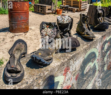Berlin Prenzlauer Berg. Quirky plant containers. Alpine Sempervivum plants in weathered old boots in garden of Ausland music centre - Stock Photo
