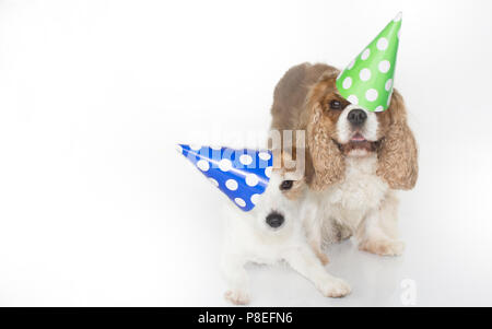 CUTE COUPLE CELEBRATING A BIRTHDAY PARTY AND WEARING A BLUE AND GREEN POLKA DOT PAPER HAT. ISOLATED ON WHITE BACKGROUND. SPACE FOR TEXT. - Stock Photo