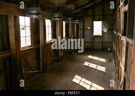 Old Murray Downs Shearing Shed which has been relocated from the banks of the Murray River Swan Hill to Hay in NSW and is now an exhibit at Shear Outb - Stock Photo