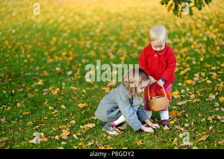 Little girls gathering acorns for crafting and playing - Stock Photo