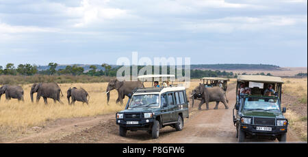 Masai Mara, Kenya - 3 August 2017: Tourists in safari vehicles, stop on a dirt road in the Masai Mara to watch a herd of elephants  passing by. - Stock Photo