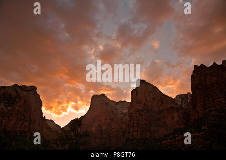 UT00438-00...UTAH - Sunset over the Court of the Patriarchs in the Zion Canyon area of Zion National Park. - Stock Photo