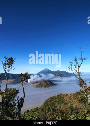Bromo Mountains in a beautiful foggy sunrise seen from Penanjakan Hill - Stock Photo