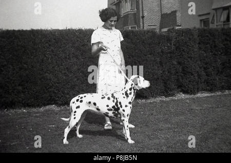 1950s, a young lady with her pet dalmatian dog outside in a garden, England, UK. - Stock Photo