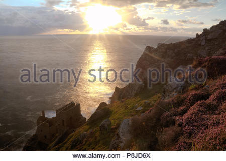Sunset looking out to sea over Ling heather (Calluna vulgaris), and the historic mining buildings - 'The Crowns'; Botallack; Nr St Just; Cornwall - Stock Photo