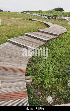 S-shape curve wooden footpath in grass, Mambo (Ocean Sunfish) Oceanic Recreation Park, Hualien County, Taiwan. Vintage toned - Stock Photo