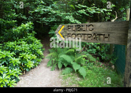Wooden fingerpost public footpath sign pointing towards a path that goes off into a wood, in West Sussex, England, UK. - Stock Photo