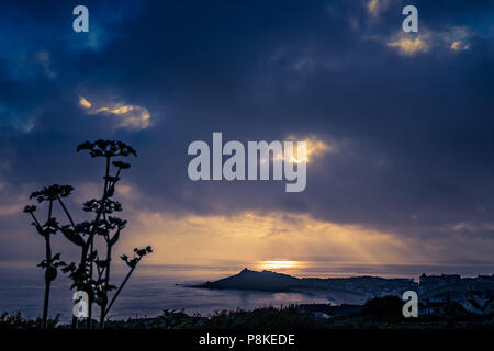 Porthgwidden Beach in St. Ives at dawn, Cornwall, England, UK - Stock Photo