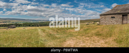 North Pennines AONB Panoramic landscape, looking south west to west up Teesdale from above Newbiggin - Stock Photo