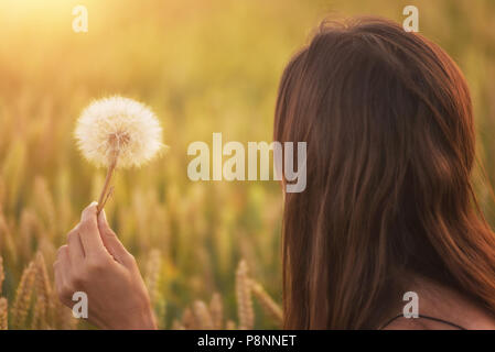Beautiful young woman blows dandelion in a wheat field in the summer sunset. Beauty and summer concept - Stock Photo