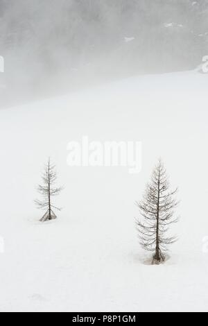 Dramatic atmosphere during springtime in the French Alps with the snow melting and clouds hanging low - Stock Photo