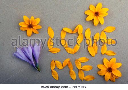 petals flower yellow love text blue buds - Stock Photo