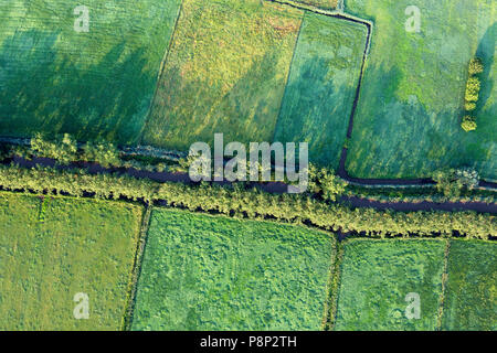 aerial of green fields and canals - Stock Photo