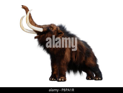 3D rendering of a woolly mammoth isolated on white background - Stock Photo