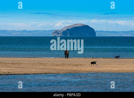View of Bass Rock and lighthouse from Belhaven Bay East Lothian Scotland, UK, - Stock Photo