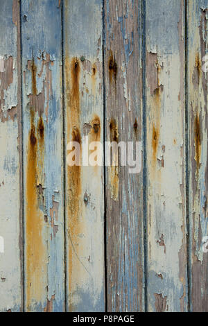 Peeling paint and rusting nails on wooden planks on a door near Chesil Cove, Chesil Beach, Dorset England UK GB - Stock Photo