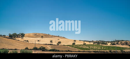 Panoramic inland hillside landscape of Sardinia, Italy. With a small vineyard. - Stock Photo