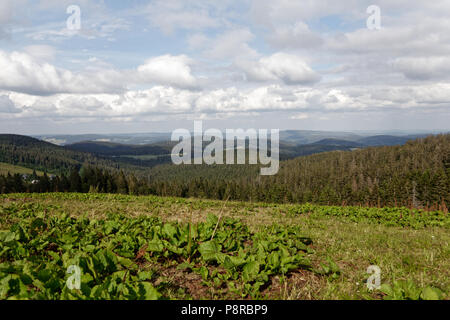 Beatyfull view with soft clouds of the Baldenweger Buck in Germany - Stock Photo