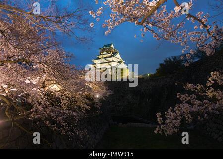 Japan landscape at dusk. Osaka Castle during the spring cherry blossom season flower at night in Osaka, Japan. - Stock Photo