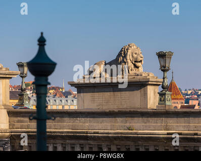 Sculpture of a lion on a chain bridge in Budapest. Hungary - Stock Photo