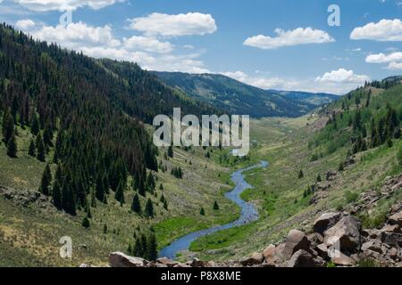 The Rio de Los Pinos flowing through the lush landscape of it's valley in the mountains of Colorado, as seen from the Cumbres and Toltec scenic railro - Stock Photo
