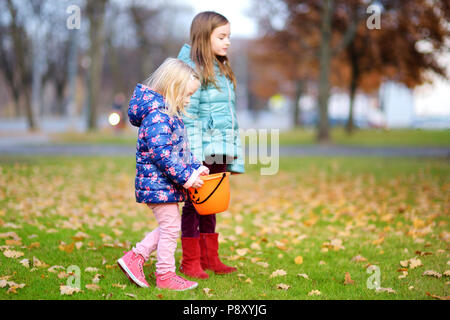 Little girls gathering acorns for crafting and playing on beautiful autumn day outdoors - Stock Photo