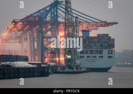 Hamburg, Germany - February 23, 2014: Container vessel Cosco Belgium serviced at Container terminal Tollerort in Port of Hamburg. Intended grain. - Stock Photo
