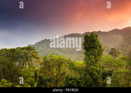 Colorful sky at sunrise over the rainforest in Chagres national park, along the old Camino Real trail, Republic of Panama. - Stock Photo