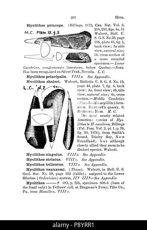 A dictionary of the fossils of Pennsylvania and neighboring states named in the reports and catalogues of the survey (Page 297) - Stock Photo