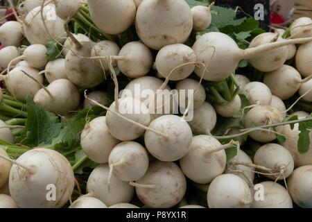 Still life of bunches of organic turnips for sale at a farmers market - Stock Photo