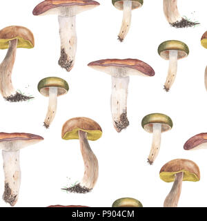 Russules and Boletus edulis mushrooms, seamless pattern. Watercolor painting. Isolated on a white background. - Stock Photo