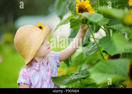 Cute little girl wearing straw hat reaching to a sunflower in summer field. Summer activities in a garden. - Stock Photo
