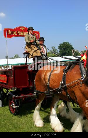 Guildford, England - May 28 2018: Dray or open wooden wagon belonging to Hook Norton Brewery, being pulled by two bay Shire horses in traditional leat - Stock Photo