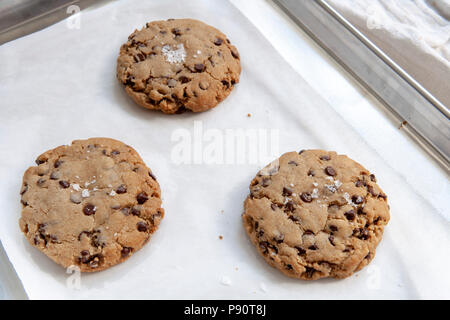 Chocolate Chip Cookies on Baking Sheet - Stock Photo