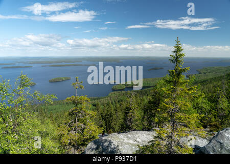 Landscape view over lake Pielinen in Koli National Park in Finland at sunny summer day - Stock Photo
