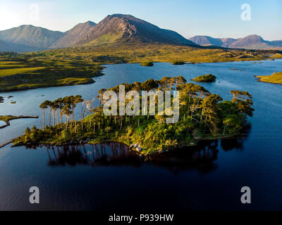 Twelve Pines Island, standing on a gorgeous background formed by the sharp peaks of a mountain range called Twelve Pins or Twelve Bens, Connemara, Cou - Stock Photo