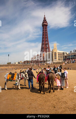 UK, England, Lancashire, Blackpool, donkeys on beach below Blackpool Tower giving children rides - Stock Photo
