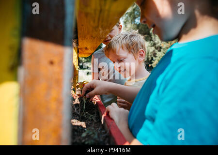 Young students learning about plants in a park. Group of children planting plants together in a garden on a sunny day. - Stock Photo